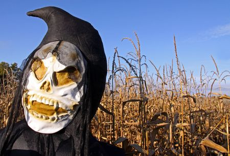 Grim Reaper Death inflatable in a corn field photo