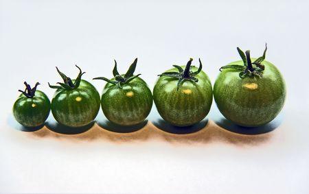 5 green tomatos photo