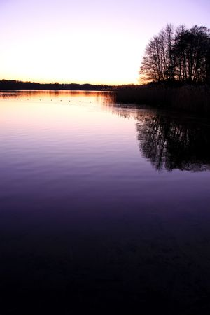 Lake and trees and sunset photo
