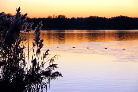 Sunset winter view of lake and reeds at dusk Stock Photo - 6193331