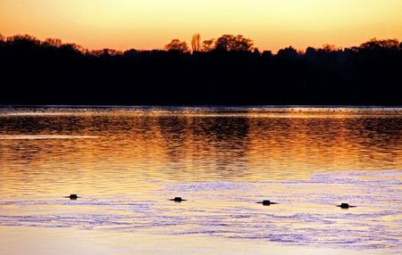 Sunset winter view of lake and trees at dusk Stock Photo - 6193334