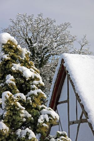 Rural view of an old oak beamed house and trees in winter snow Stock Photo - 6423797