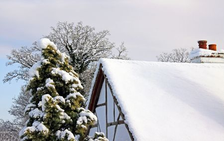 Winter view of an old oak beamed cottage and trees in snow Stock Photo - 6423792