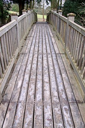 A wooden bridge crossing over into forest trees Stock Photo - 6529317