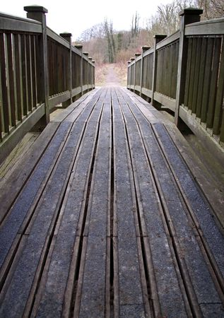A wooden bridge crossing over into forest trees Stock Photo - 6523898