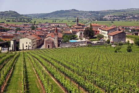 The Italian town of Soave, famous for its wine and grape vineyards