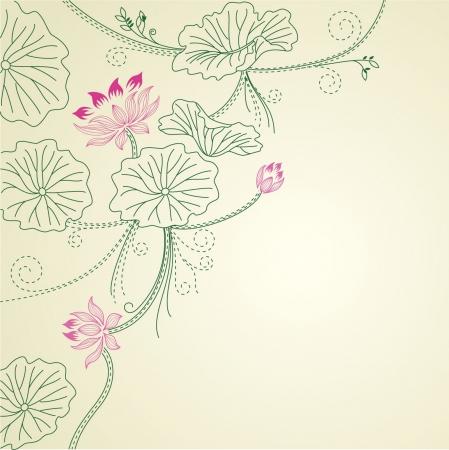 flor de loto: Lotus fondo