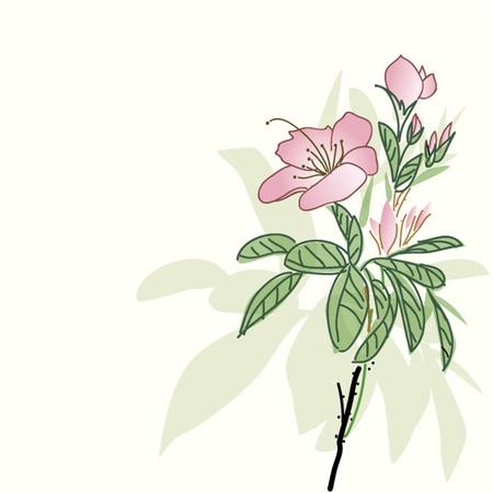 skecth: flower sketch Illustration