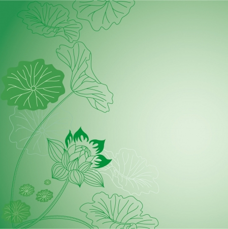 Lotus flower Illustration
