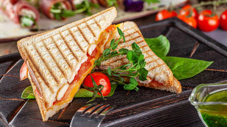 European cuisine. Homemade sandwich or bread toast with chicken, tomatoes and cheese. Beautiful serving dish in a restaurant in a white plate. background image, copy space text