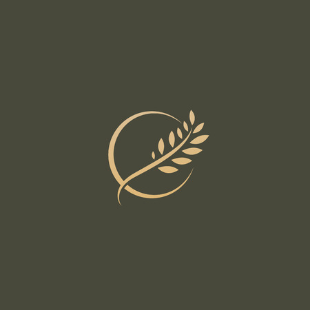 Illustration design of elegant, premium and royal logotype leaf on a dark background. Vector icon of gold ear.
