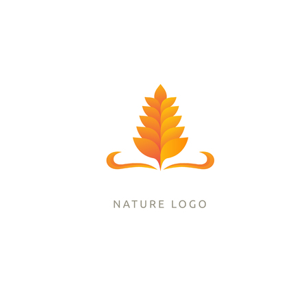 Illustration design of elegant, premium and royal logotype leaf . Vector icon of gold ear.