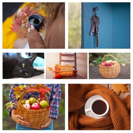 Autumn collage of seven photos. Hot cup of tea in a womans hand, basket with apples, old vintage keys, cute black cat, old books. Fall. Warm and cozy.