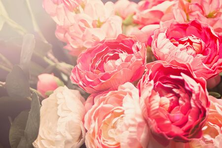Blurred view of beautiful blooming flowers as background