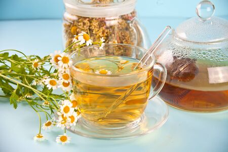 Glass cup of healthy herbal camomille tea on the blue background. Naturopathy. Matricaria chamomilla.