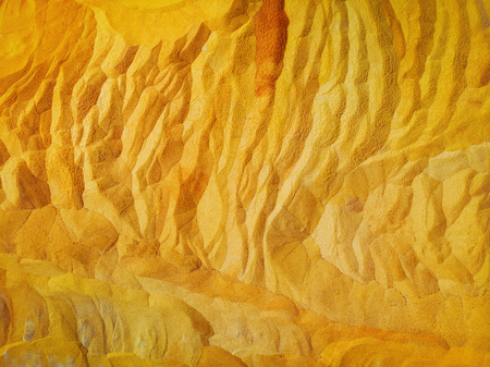 Yellow corn background fresh corn textures