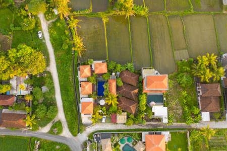 Green rice fields, villas, palms. Ubud, Bali, Indonesia. Фото со стока