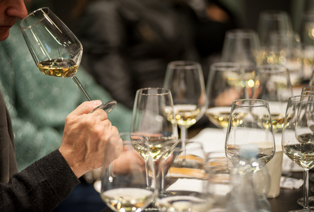 Man tasting white wine during a masterclass. Stock Photo
