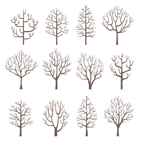 Set vector illustrations of tree in design. ( Isolated on background) Part 4