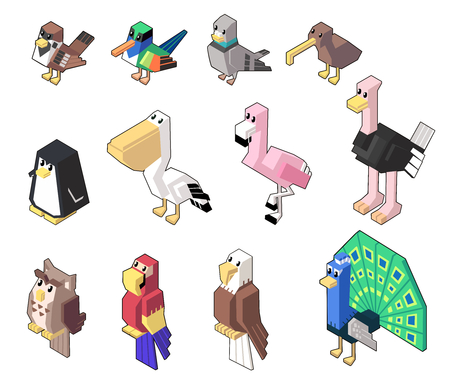 Set vector illustration of cute isometric poultry in style isolated on background.