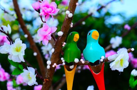 ascetic: sweetheart bird