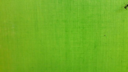 bright: Woven Green Stock Photo
