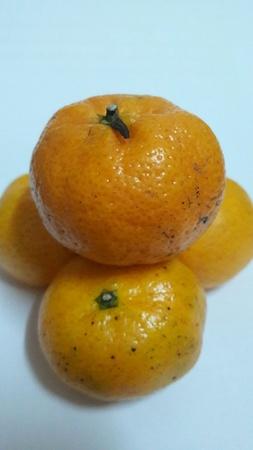 bright: Orange