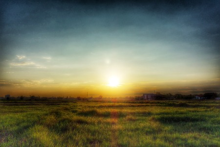 sunrises: Green Field and Sunset  Stock Photo