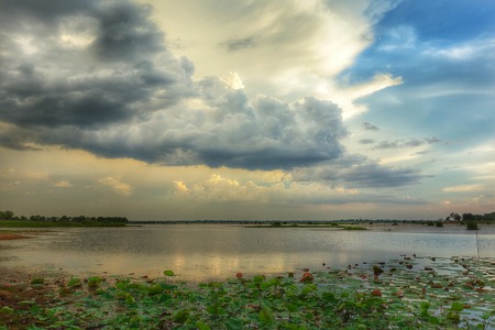 streamlet: Clouds sunset sky water reflection lotus