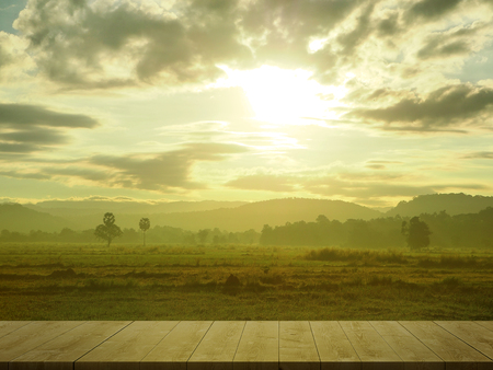 Rice field, sugar palm and Mountain with wooden floor in morning. Imagens