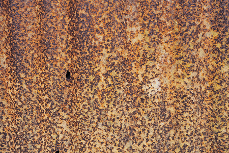 Rust metal sheet texture