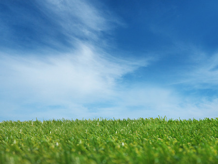 background of green grass with blue sky Imagens