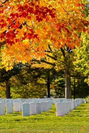 秋天,华盛顿特区附近的阿灵顿国家公墓五颜六色的树叶和坟墓