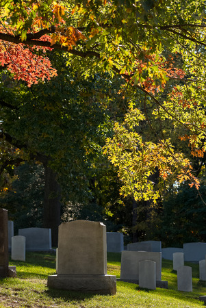 Colorful changing leaves above tombs at Arlington National Cemetery near to Washington DC, in Autumn Stock Photo