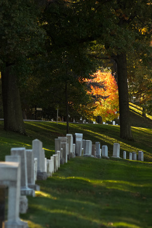 Artistic scene of colorful changing leaves at Arlington National Cemetery near to Washington DC, in Autumn Stock Photo