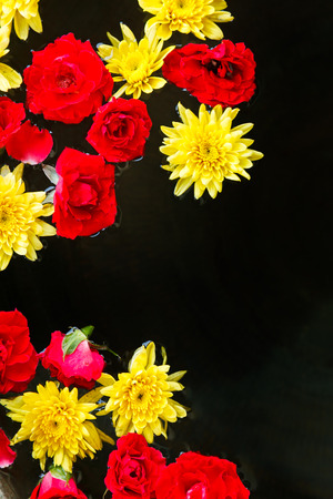 colorful flowers on black water background