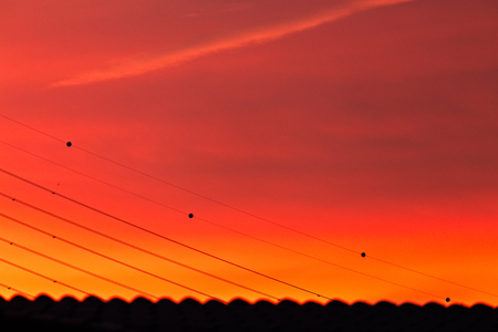 Silhouette scene of high voltage electric wire with red and orange sky as a background at twilight time