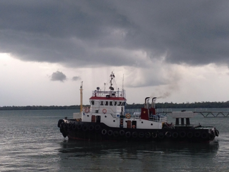 tug boat: Tug Boat sails in Kalimantan Indonesia
