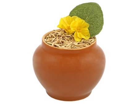 Clay pot with oats grain and decorative yellow flower isolated on white background. Stock Photo - 9681381