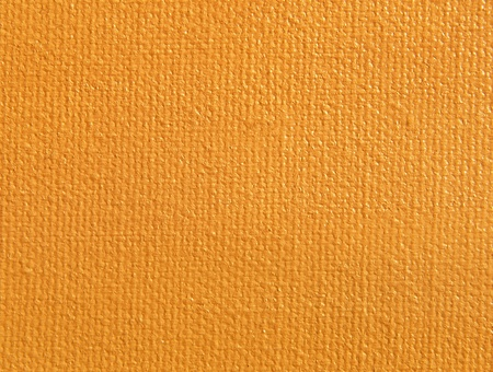 Orange painted canvas texture as background.