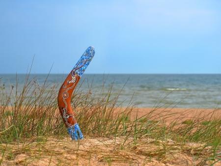 Color boomerang on overgrown sandy beach against blue sea and sky.