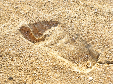 Human trace on the yellow sand on a beach taken closeup. photo