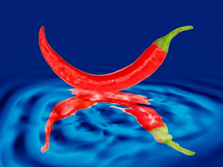 drown: Red hot chile pepper drown in blue water ripples
