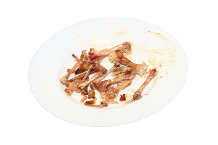 pauper: Picked chicken bones on plate isolated on white background.