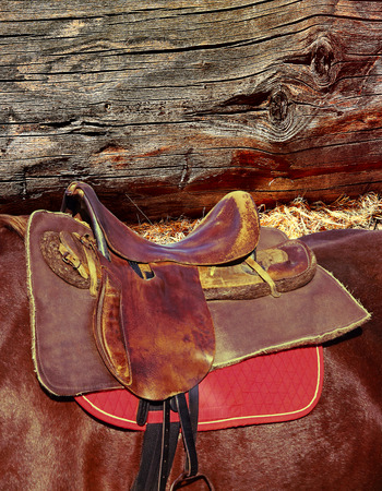 saddle: Brown horse ridding saddle on grunge log wall background.