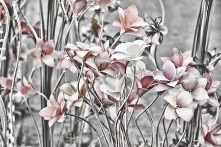 altered: Floral background.Retro style toned image.Digitally altered image.