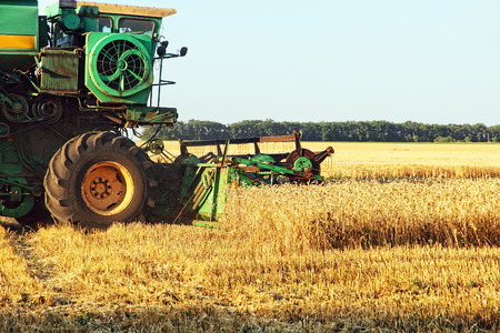 Combine harvester working in wheat field. Stock Photo