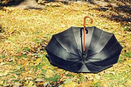 Overturn black umbrella on yellow foliage in autumn park.
