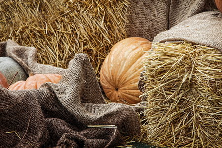 Thanksgiving Display.Pumpkins and Gourds among bale of straw and burlap sacks.Toned image. Stock Photo