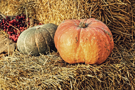 Pumpkin on hay bale.Thanksgiving Display.Retro style toned image.
